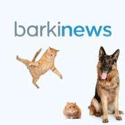 Barkinews