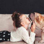 TEST - Cómo saber si mi perro es CONSENTIDO y me manipula