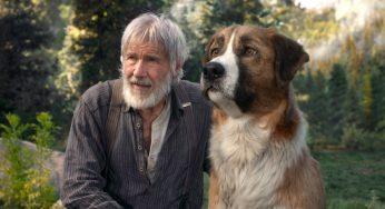 Raza de perro de El llamado Salvaje (película: La llamada de lo salvaje)